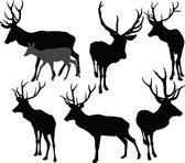 Colección de ciervos - vector — Vector de stock