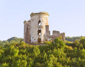 The tower of the old castle — Stock Photo