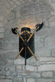 Shield with axes on the wall — Foto Stock