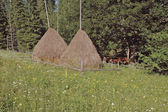 Haystack on a mountain meadow — Stock Photo