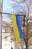 Ukrainian flag on a background — Stock Photo