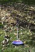 Vassoura com folhas — Foto Stock