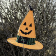 Witch hat - Stock Photo