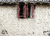 ściany papryki — Zdjęcie stockowe