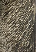 Nagels decoratie — Stockfoto