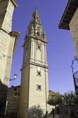 Katedral kulesi — Stok fotoğraf