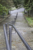 Railing with ladder — Stock Photo