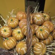 Stock Photo: Small pumpkins