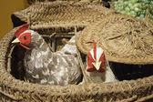Hens in baskets — Stockfoto