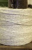 Bovine thread — Stock Photo