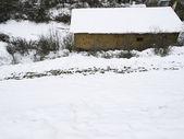 房子与雪 — 图库照片