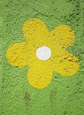 Sarı çiçek — Stok fotoğraf