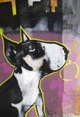 Domestic dog — 图库照片