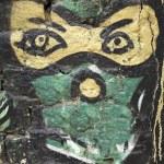 Постер, плакат: Masked Ninja