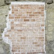 Stock Photo: Bricks and plaster