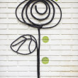 Stock Photo: Spiral Flower
