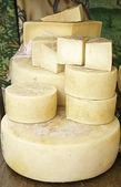 Hard cheese — Stock Photo