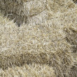 Straw in haystack — Stock Photo