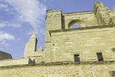 Gothic Castle — Stockfoto