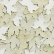 Autumn leaves white — Stock Photo