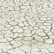 Arid and dry land — Stock Photo