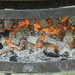 Embers and Ash — Stock Photo