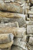 Drewno dzienniki — Zdjęcie stockowe