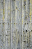 Dark wooden door — Stock Photo