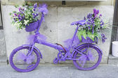 Bicycle with flowers — Stock Photo