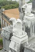 Eagles stone castle — Stock Photo