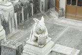 Rabbit in castle — 图库照片