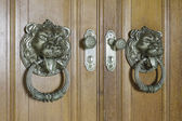 Lions wood door — Foto Stock