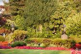 Lovely Front Yard Greenery — Stock Photo