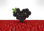 Cuore di berry — Foto Stock