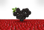 Berry srdce — Stock fotografie