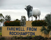 The Monument especial oxen that survives in very dry north Australia. November 6, 2007 in Rockhampton, Australia. — Stock Photo