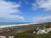 Seaside of the National park Nullarbor. South Australia. — Stock Photo