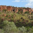 Stock Photo: Australia, Western Australia, National park VictoriRiver.