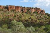 Australia, Western Australia, National park Victoria River. — Stock Photo
