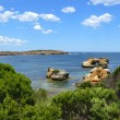 Stock Photo: Seaside with rocky formation, borough, tree and very blue sky. Great OceRoad, Australia, Victoria, National park.
