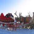 Northern residents in national costumes. Reindeer pulling sleds. National holiday. — Stock Photo