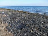 Red Coast Sea near Hurghada. Spilled oil on the Red Sea coast. — Stock Photo