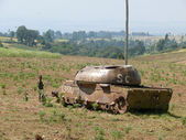 JIGA, ETHIOPIA - NOVEMBER 24, 2008: Soviet tank in the old times. Unfamiliar child standing near the tank. Nature landscape, vegetation in the valley. — Stock Photo