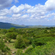 Valley. Forested mountains in the distance. Landscape nature. Africa, Ethiopia. — Stock Photo