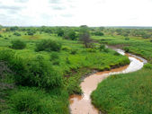 Landscape nature. Meandering river. Trees around. Africa, Kenya. — Stock Photo