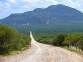 The mountain scenery. The road. Africa. Kenya. — Stock Photo