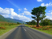 Trip to Africa, Tanzania. The road. The landscape scenery around — Zdjęcie stockowe