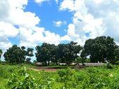 Kibiti, tanzania, áfrica. la aldea de la naturaleza. — Foto de Stock