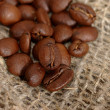 Coffee grains - Stock Photo