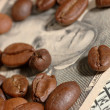Grains of coffee and dollars — Stock Photo